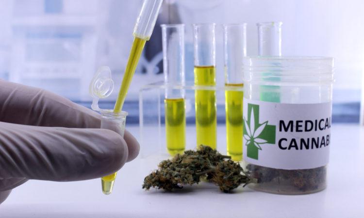 Bonnes Pratiques De Production De Cannabis (BPP)
